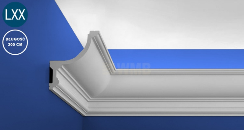 Light Moulding C901
