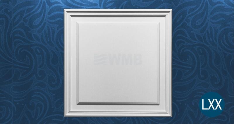 Wall panel D503