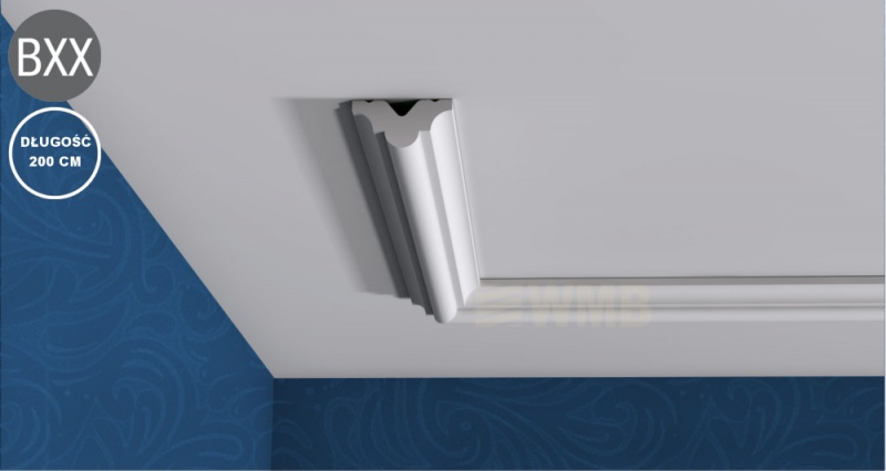 Ceiling Moulding Basixx PB513
